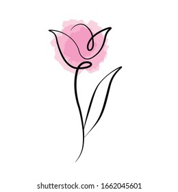 beautiful tulip line vector ILLUSTRATION
