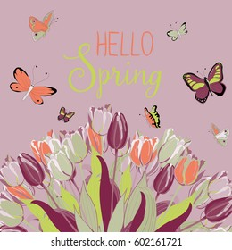 Beautiful tulips with butterflies flying around. Hello Spring. Vector illustration on light violet background