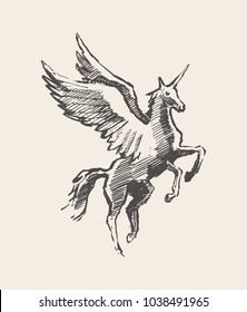 Beautiful unicorn with wings, hand drawn vector illustration, sketch