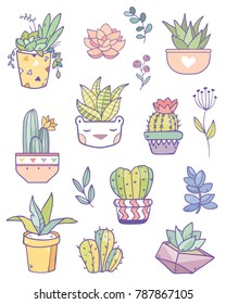 Beautiful vector collection of cactuses and succulents. Stickers set collection. Isolated on white background