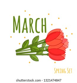 Beautiful vector flat set with colorful tulips on white background. Vector floral background. Cute design for woman's day in flat style. Vector holiday International 8 march illustration.