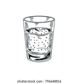 Beautiful vector hand drawn beverage Illustration.  Detailed retro style drink image. Vintage sketch Element for labels design.