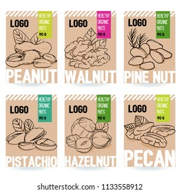 Beautiful vector hand drawn organic nut card set. Walnut, pine nut, pistachio, peanut, hazelnut, pecan. Template collection for packaging design. Modern illustrations isolated on white background.