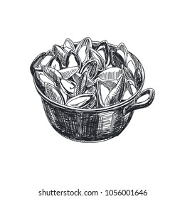 Beautiful vector hand drawn seafood Illustration. Detailed retro style a saucepan with mussels image. Vintage sketch element for labels, packaging and cards design.