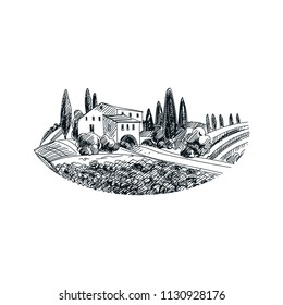 Beautiful vector hand drawn vineyard  Illustration. Detailed retro style image. Vintage sketch element for labels, packaging and cards design. Modern background.