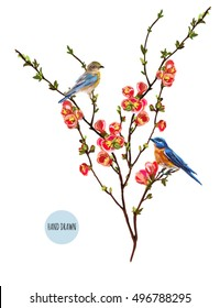 Beautiful vector illustration with tropical japanese flowers and birds, tree, spring wallpaper,  branches, leaves and various flowers isolated on white background