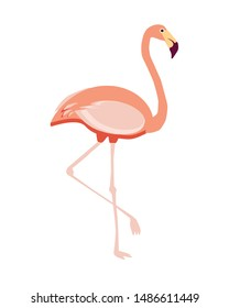 Beautiful vector image with pink flamingo.