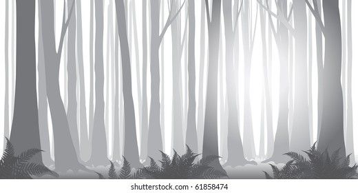 beautiful vector misty forest banner in gray-scale