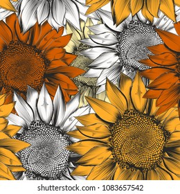 Beautiful vector pattern from hand drawn sunflowers