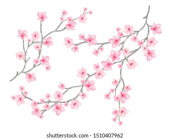 Beautiful vector pattern illustration with tropical japanese flowers, tree, spring wallpaper, branches. Perfect for wallpapers, web page backgrounds, surface textures, textile.