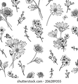 Beautiful vintage seamless pattern with blue flowers on a white background. Garden asters, chrysanthemums, daisies. Vector illustration. Black and white.