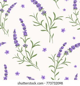 Beautiful violet lavender flowers retro background on white