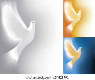 Beautiful white dove flying way up and radiating light. Semi-Abstract style vector illustrations.