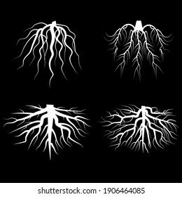 Beautiful white roots. Doodle illustration on black backdrop. Silhouette vector. Line art. Stock image.