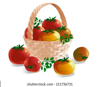 Beautiful wicker basket with red, yellow and green tomatoes and herbs isolated on a white background. Vector illustration.