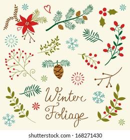 A beautiful winter foliage collection