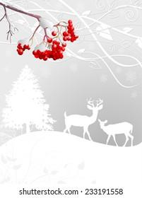 Beautiful Winter forest scene background