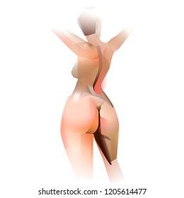 beautiful woman body back standing vector illustration
