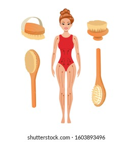 beautiful woman with directions of massage strokes. dry brushing, scrubbing skin with natural wooden Brush to stimulate blood circulation. Anti Cellulite procedure Vector Illustration. Isolated