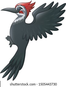 A beautiful woodpecker bird cartoon on white background
