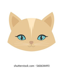 beauty face cat female blue eyes vector illustration eps 10