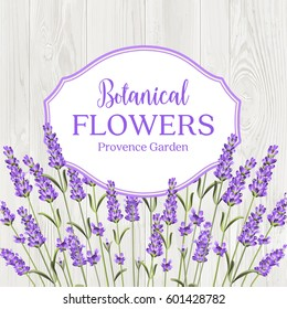 Beauty lavander label design with border over wooden frame. Botanical flowers text isolated over white background. Lavender garland. Vector illustration.