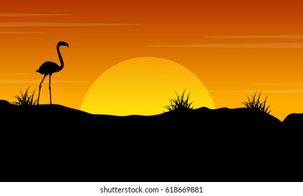 Beauty scenery flamingo at sunset silhouette