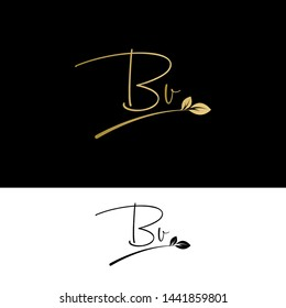 Beauty vector Initial letters BV with leaf. Signature, handwriting, fashion, boutique, wedding, jewelry, botanical , floral logo creative Vector logo Design template