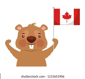 beaver of canada with flag isolated icon