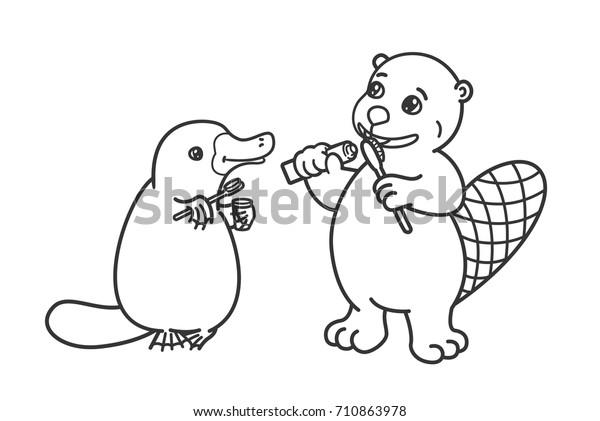 Beaver Platypus Brushing Their Teeth Coloring Stock Vector ...