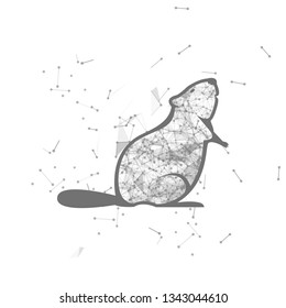 beaver.  Polygonal wireframe beaver silhouette. low poly vector illustrations on background of points and lines.