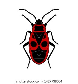 Bedbug soldier.  Insect, wildlife. Black and red silhouette of a beetle on a white background, signs, symbols. Flat design. Vector EPS10
