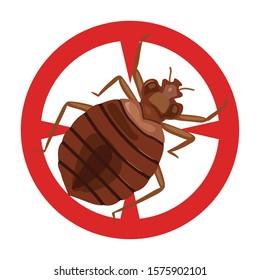 Bedbug vector icon.Cartoon vector icon isolated on white background bedbug .
