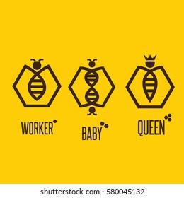bee concept 7
