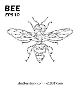 The bee consists of points, lines and triangles. The polygon shape in the form of a silhouette of a bee on a dark background. Vector illustration.