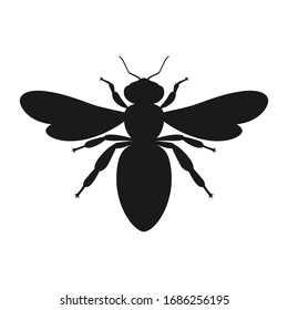 Bee graphic icon. Sign bee isolated on white background. Symbol of beekeeping. Vector illustration