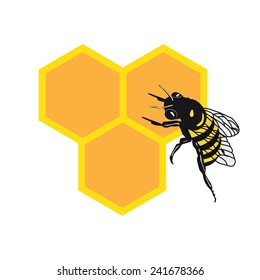 BEE AND HONEY COMB ILLUSTRATION VECTOR