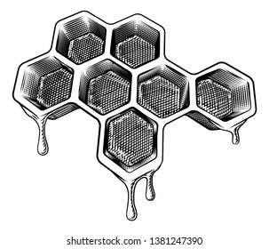 A bee honeycomb dripping with comb honey in a vintage woodcut retro style