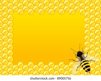 Bee with honeycomb. Vector illustration.