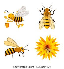 Bee icon set. Cartoon set of bee vector icons for web design isolated on white background