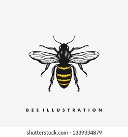 Bee illustration vector Design template. Suitable for Creative Industry, Multimedia, entertainment, Educations, Shop, and any related business