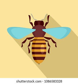 Bee insect icon. Flat illustration of bee insect vector icon for web design