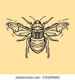 Bee logo. Bee black and light orange doodle