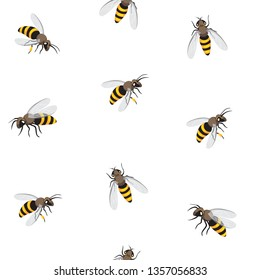 Bee seamless pattern. Honey bee vector   illustration. EPS10