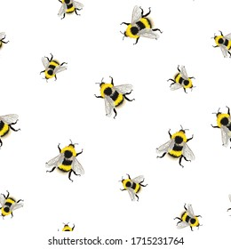 Bee seamless pattern on white background. Illustration of sketched flying bees.