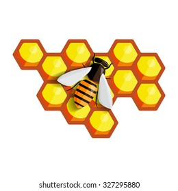 Bee sitting on a comb of honey. Vector illustration.