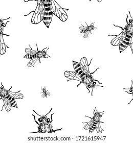 Bee sketch pattern. Hand drawn insect bees on transparent background. Seamless vector backdrop. Black and white