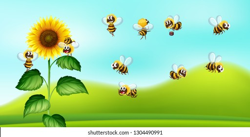Bee and sunflower nature blackground illustration