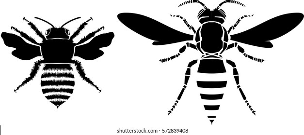Bee and wasp vector illustration