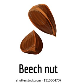 Beech nut icon. Cartoon of beech nut vector icon for web design isolated on white background